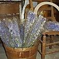Old Bushel Baskets!
