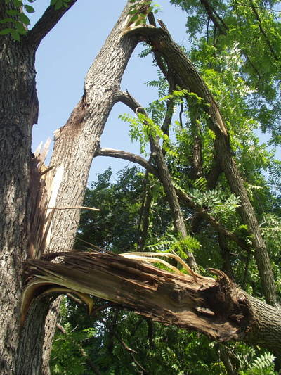072108_storm_damage_3