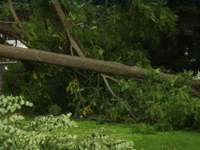 072108_storm_damage_8