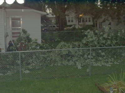 072108_storm_damage_christines_ya_4